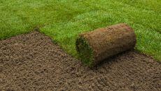 Как самостоятельно постелить рулонный газон