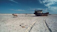 Интересные факты об Аральском море сейчас