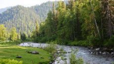 Особенности климата в тайге России в разное время года