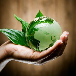 Экологическая безопасность напрямую зависит от соблюдения всех условий для запуска линии по производству пакетов
