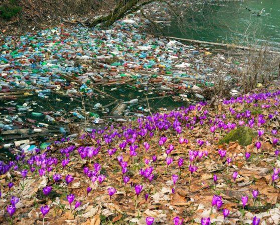 Неправильное обращение с отходами - большой ущерб окружающей среде