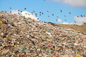 Пригородные свалки мусора