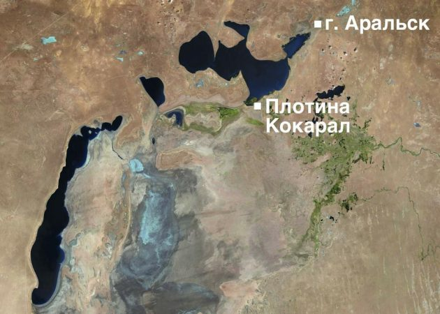 Регион Арала