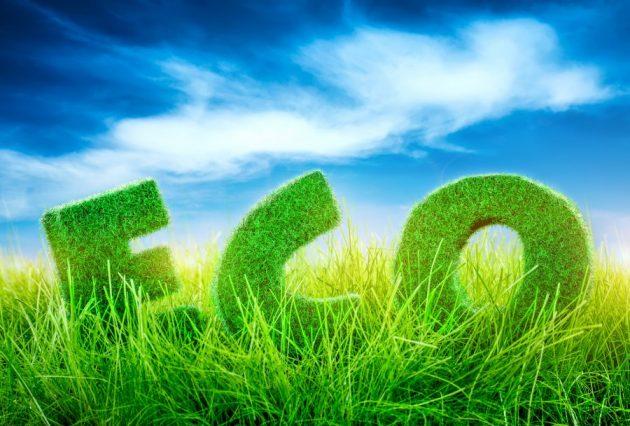 Сохранение экологии с помощью утилизации бытовой техники