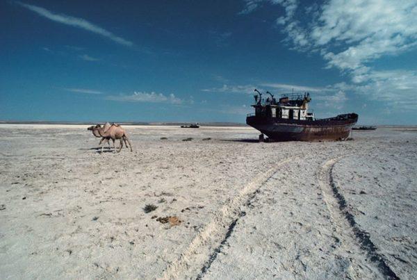 Так выглядит Аральское море сейчас