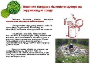 Влияние твердого бытового мусора на окружающую среду