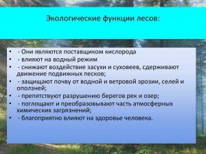 Экологические функции лесов
