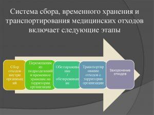 Этапы сбора, хранения и транспортирования медицинских отходов