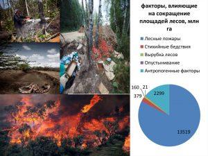 Факторы, влияющие на сокращение площадей лесов