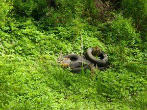Изношенные шины наносят большой вред окружающей среде