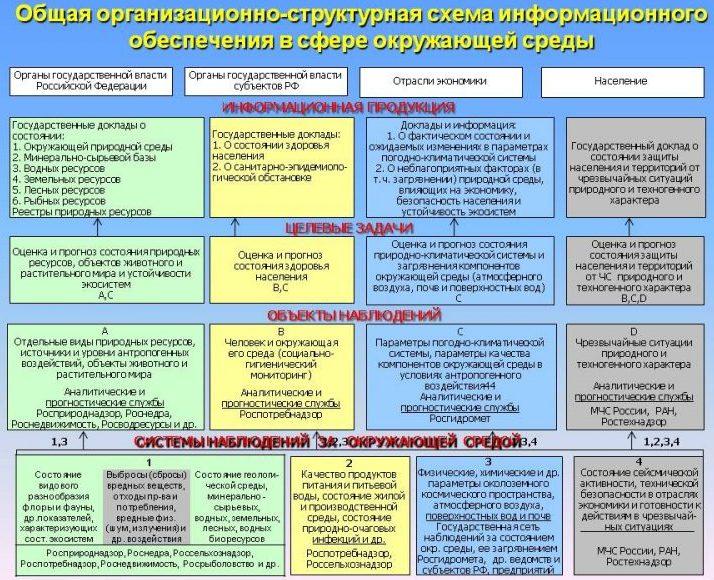 Общая схема информационного обеспечения в сфере окружающей среды