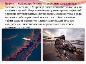 Основные причины загрязнения Мирового океана