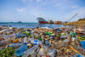 Выброс пластика приносит большой вред окружающей среде