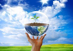 Сдача бытовой техники на утилизацию защитит окружающую среду