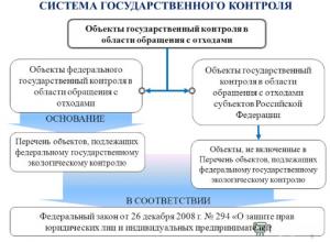Система государственного контроля