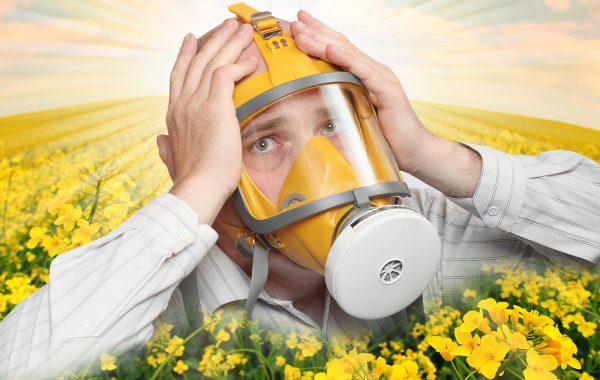 Загрязнение пыльцой растений