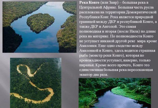 Река Конго - интересные факты