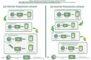 Схема прохождения согласования проекта ПДВ