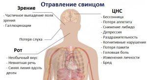 Влияние свинца на здоровье