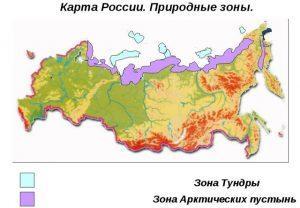 Зона тундры на карте России