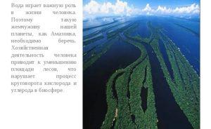 Роль Амазонки в жизни человека