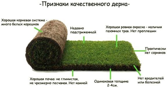 постелить рулонный газон